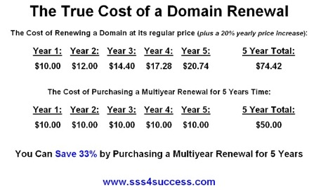 The True Cost of a Domain Renewal | SSS for Success